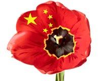 Bandeira de China Imagem de Stock