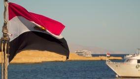 Bandeira de Egito no fundo do litoral video estoque