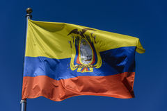 Bandeira de Equador Fotos de Stock
