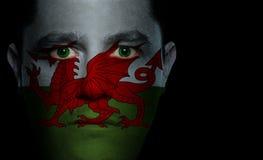 Bandeira de Galês - face masculina Fotografia de Stock Royalty Free