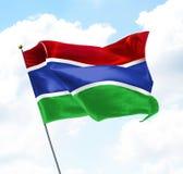 Bandeira de gambia Imagem de Stock