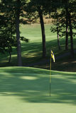 Bandeira de Golfcourse Imagem de Stock