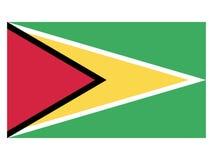 Bandeira de Guyana ilustração stock