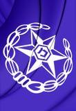 Bandeira de Israel Police Imagem de Stock Royalty Free