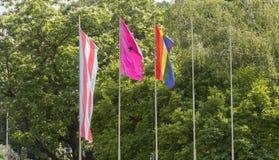 Bandeira de LGBT no polo fotos de stock
