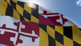 Bandeira de Maryland que acena no vento ilustração royalty free