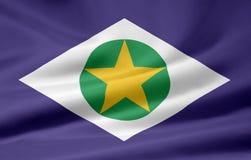 Bandeira de Mato Grosso Fotografia de Stock