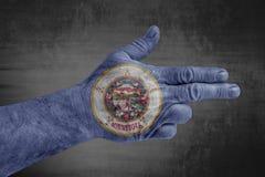 A bandeira de Minnesota do estado de E.U. pintou na mão masculina como uma arma imagens de stock royalty free