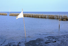 Bandeira de ondulação branca Fotografia de Stock Royalty Free
