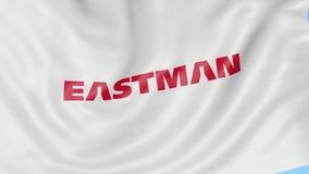 Bandeira de ondulação com logotipo da empresa de Eastman Chemical Animação do editorial do laço 4K de Seamles ilustração do vetor