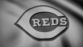 Bandeira de ondulação com o logotipo profissional monocromático, ruído da equipe dos Cincinnati Reds da tevê Grampo editorial video estoque
