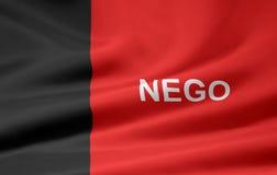 Bandeira de Paraiba Foto de Stock Royalty Free