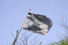 Bandeira de pirata ilustração royalty free
