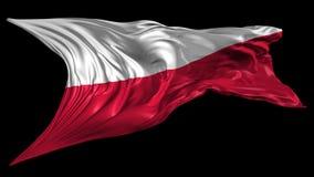 Bandeira de Poland video estoque