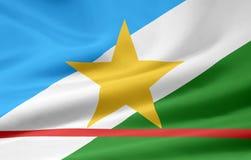 Bandeira de Roraima Imagem de Stock Royalty Free
