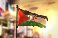 Bandeira de Sahrawi contra o fundo borrado cidade no nascer do sol Backligh Foto de Stock Royalty Free