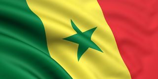Bandeira de Senegal Foto de Stock Royalty Free