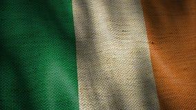 Bandeira de serapilheira da Irlanda vídeos de arquivo