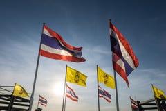 Bandeira de Tailândia no por do sol Imagens de Stock