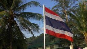 Bandeira de Tailândia que funde no vento - movimento lento video estoque