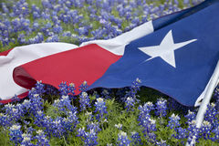 A bandeira de Texas entre o bluebonnet floresce no dia de mola brilhante fotos de stock