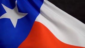 Bandeira de Texas que acena no vento no Dia da Independência em América no mo lento filme