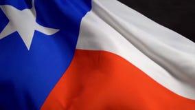 Bandeira de Texas que acena no vento no Dia da Independência em América no mo lento ilustração stock