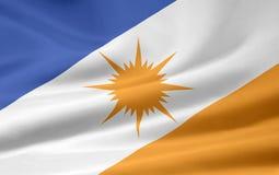 Bandeira de Tocantins Imagem de Stock Royalty Free