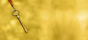 Bandeira de treinamento da vida no ouro foto de stock