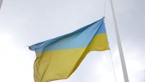 Bandeira de Ucrânia vídeos de arquivo