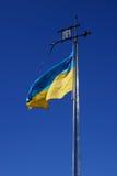 Bandeira de Ucrânia Fotografia de Stock