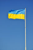 Bandeira de Ucrânia independente Foto de Stock