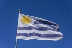 Bandeira de Uruguai Imagem de Stock