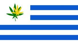 Bandeira de Uruguai com folha do cannabis Fotos de Stock