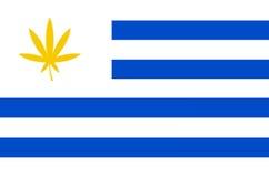Bandeira de Uruguai com folha do cannabis Fotografia de Stock