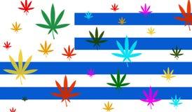Bandeira de Uruguai com folha do cannabis Imagens de Stock