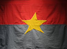 Bandeira de Viet Cong Imagens de Stock