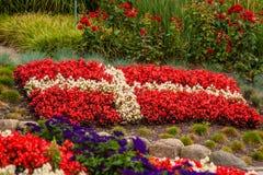 Bandeira dinamarquesa feita fora das flores Fotos de Stock Royalty Free
