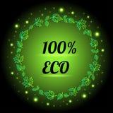 bandeira do alimento do eco de 100% ilustração royalty free