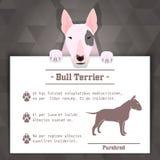 Bandeira do cão de bull terrier Foto de Stock Royalty Free