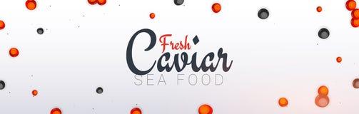 Bandeira do caviar Fundo delicioso do marisco Ilustração do vetor do caviar Alimento luxuoso natural e saudável Projeto para ilustração stock