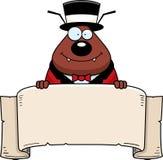 Bandeira do circo da pulga dos desenhos animados Fotos de Stock