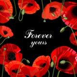 Bandeira do dia do ` s do Valentim com as grandes flores vermelhas Imagem de Stock
