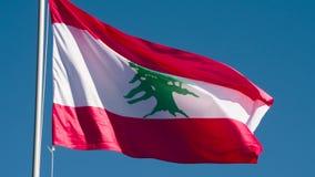 Bandeira do estado de Líbano vídeos de arquivo