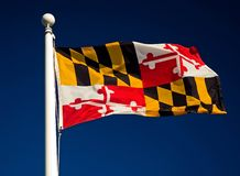 Bandeira do estado de Maryland Foto de Stock