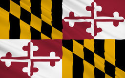 Bandeira do estado de Maryland Imagens de Stock Royalty Free