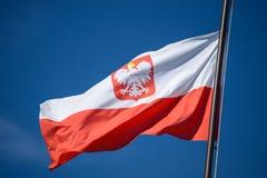 A bandeira do estado do Polônia com o emblema da república do Polônia, em um fundo do céu azul, no vento imagens de stock