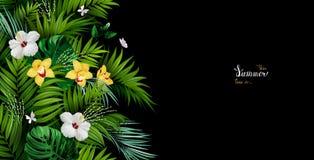Bandeira do feriado com palma tropical, folhas do monstera, as flores de florescência dos hibiscus, e das orquídeas no fundo pret ilustração stock