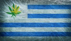 A bandeira do Grunge de Uruguai com um cannabis folheia Imagem de Stock