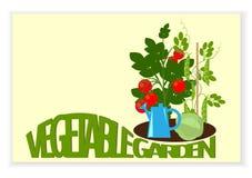 Bandeira do jardim vegetal Imagens de Stock